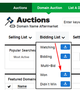 GoDaddy Auction Strategy